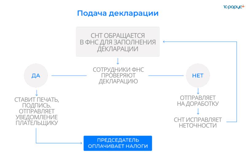 Порядок подачи декларации СНТ